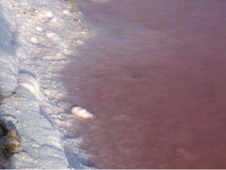 Closed view of the salt deposits