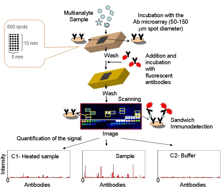 Automating Ab Immunoassay